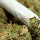 Полицейские обнаружили в салоне авто жителя Пензенской области 16 грамм марихуаны
