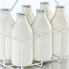 Жители Заречного испугались ящура в молоке  от «Вимм-Билль-Данн»