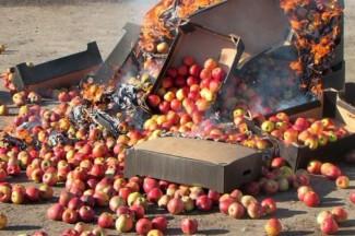 «Плодоовощной штурм». В Пензенской области с начала года изъяли более 4,5 тонн некачественных продуктов