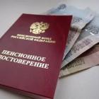 121 житель Пезненской области в 2016 году не смог выйти на пенсию по старости