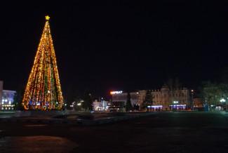 Главную елку Пензы обещают собрать к 1 декабря