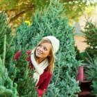 Сколько стоит живая новогодняя елка в Пензе?