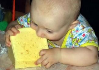 Вкус с детства. Детей Заречного накормят 10 тоннами сыра