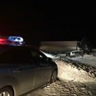 На дороге, по пути из Пензы в Саратов, в ДТП с участием фуры погибли семь иностранцев