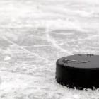Во время хоккейного матча шайба отлетела в голову ребенка