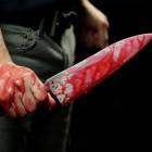 Молодой житель Пензенской области зарезал свою тетю