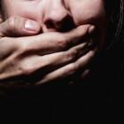 СК прокомментировал инцидент с насильником и 11-летней жительницей Пензы