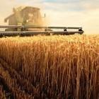 На развитие сельского хозяйства Пензенская область получит более миллиарда