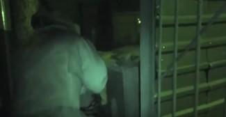 Появился ролик со штурмом квартиры пензенца, взявшего в заложники свою семью