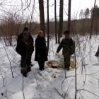 В Пензенской области мужчина незаконно нарубил дров почти на 100 тыс. руб