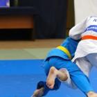 Сборная команда Пензенской области заняла третье место на V традиционном Открытом Кубке ЦСКА среди юношей по дзюдо