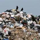 В Пензенской области может появиться завод по переработке мусора