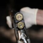 Cледователи опубликовали фото предполагаемого ружья, из которого были застрелены жительницы Константиновки