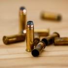 Рецидивист из Пензенской области хранил боеприпасы в собственном доме