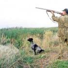 В Пензе охотники получают разрешения на добычу пернатой дичи
