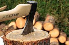В Заречном на территории Минобороны РФ неизвестный нарубил деревьев на полмиллиона