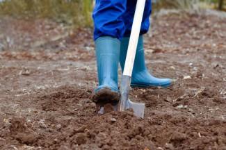 Жителя Пензенской области, не вышедшего на обязательную уборку, посадили на 7 суток