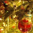 Рождественскую архиерейскую елку в пензенском драмтеатре посетили более 1000 детей