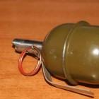 Зареченец до жути испугался гранаты, подброшенной в его гараж
