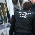 Следователи озвучили причину падения самолета в Пензенской области