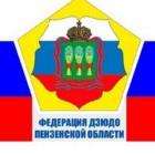 Второй этап VII Спартакиады учащихся по дзюдо пройдёт в Пензе на базе дворца единоборств «Воейков» 26-28 мая 2017 года