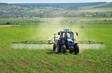 Россельхозбанк в 2017 г. направит 1,2 трлн рублей на кредитование АПК