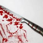 В полиции Пензы рассказали, как мать порезала ножом сына на Фурманова