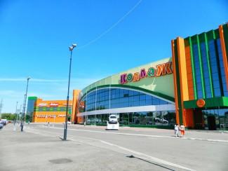 Пензенская мэрия отсудила у ТЦ «Коллаж» 102 млн. рублей