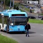 Пензенский водитель остановил троллейбус и спас котенка