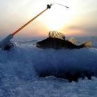 В Пензе МЧС и водолазы ищут рыбака-подледника