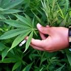 Пензенцу грозит второй тюремный срок за торговлю наркотиками