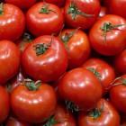 В Пензе и Саратове нашли 850 килограммов санкционных продуктов
