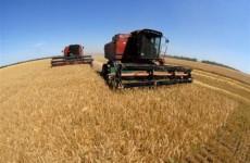 Урожай зерна в Пензенской области составил более 1,5 млн. тонн