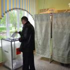 Стали известны промежуточные результаты выборов в Законодательное собрание после обработки 20% бюллетеней