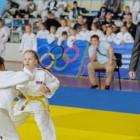 Во втором этапе Кубка губернатора Пензенской области по дзюдо приняли участие 450 спортсменов
