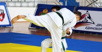 Сформирована сборная команда Пензенской области для участия в Первенстве ПФО по дзюдо