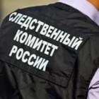 Пензенский СУ СК заинтересовался падением женщины в колодец на Ударной