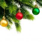 Главная новогодняя елка переместится на площадь Ленина