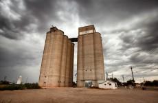 «Тайные сельхозколлаборации». Росагро продала «Тамала-элеватор» своему директору по развитию?