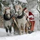 Пензенские приставы преподнесут должникам свой новогодний «подарок»