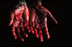 По факту кровавого побоища в лесу под Пензой возбудили уголовное дело