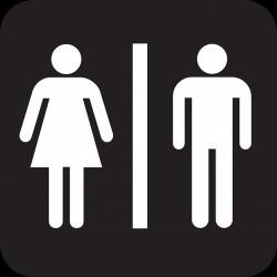 Молодая женщина в пензенском туалете стала жертвой «тамбовского сюрприза»