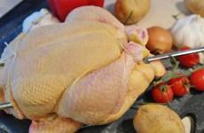 «Росконтроль» обнаружил в курином мясе российских брендов антибиотики и опасные бактерии