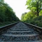 Жители Пензы смогут купить билеты для животных на поезд