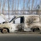 В Пензенской области  сгорела иномарка. ФОТО