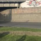 Пензенец может сесть в тюрьму на три года за граффити с котиком