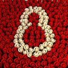В Пензе цветов к 8 марта хватит на всех