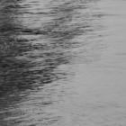 СМИ: В Засечном в результате нелепой случайности едва не утонули маленькие дети