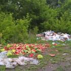 Пензенцы возмущены свалкой на берегу реки