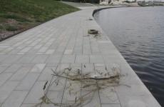 Приливы мешают мэрии Пензы очистить Суру